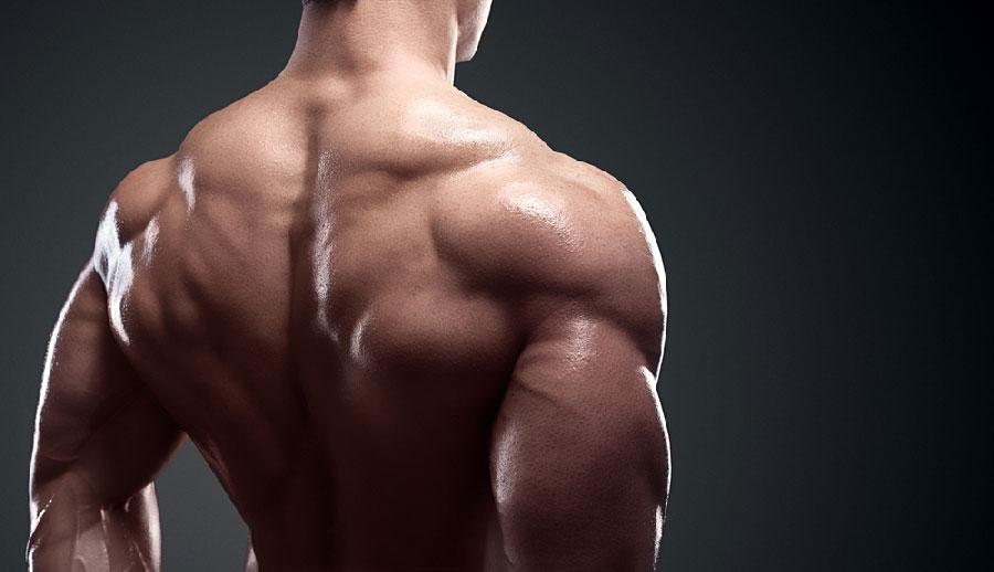 تمارين الظهر فى الجيم ... أسرار للحصول على عضلات ظهر مميزه