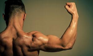 جدول تمارين كمال الاجسام تضخيم عضلة الباي
