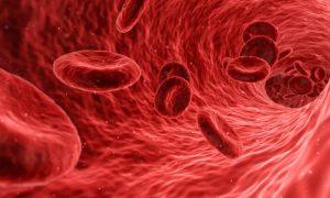 10 أطعمة تزيد الصفائح الدموية بجسمك